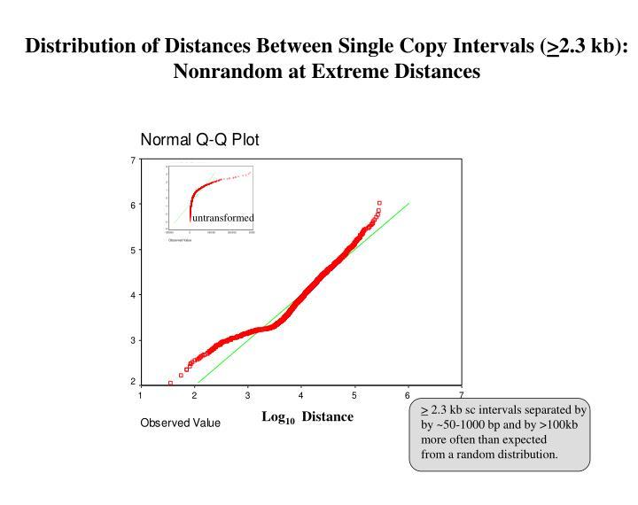 Distribution of Distances Between Single Copy Intervals (