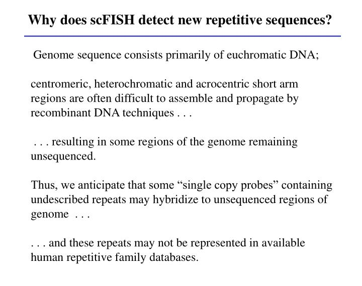 Why does scFISH detect new repetitive sequences?