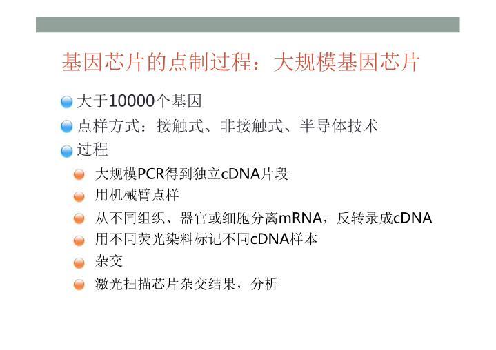 基因芯片的点制过程:大规模基因芯片