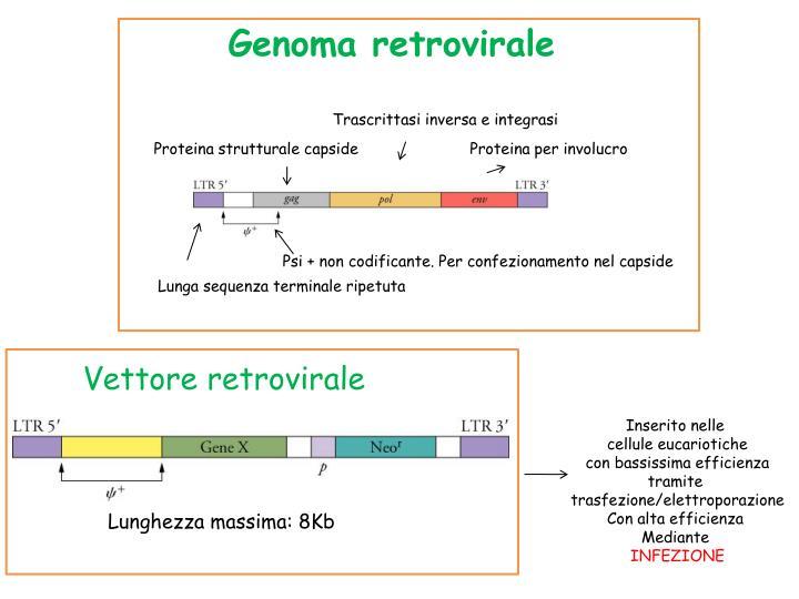 Genoma retrovirale