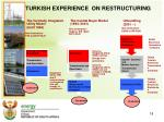 turkish experience on restructuring