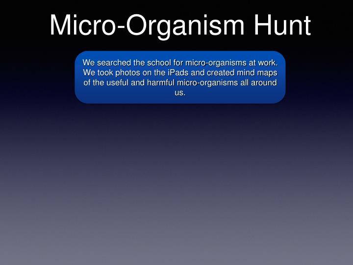 Micro-Organism Hunt