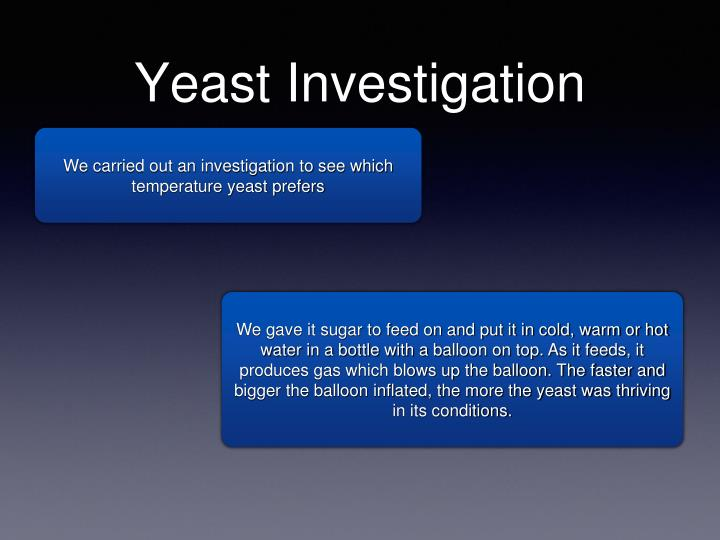 Yeast Investigation