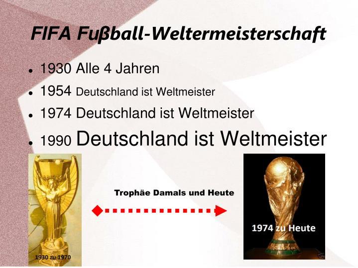 FIFA Fu