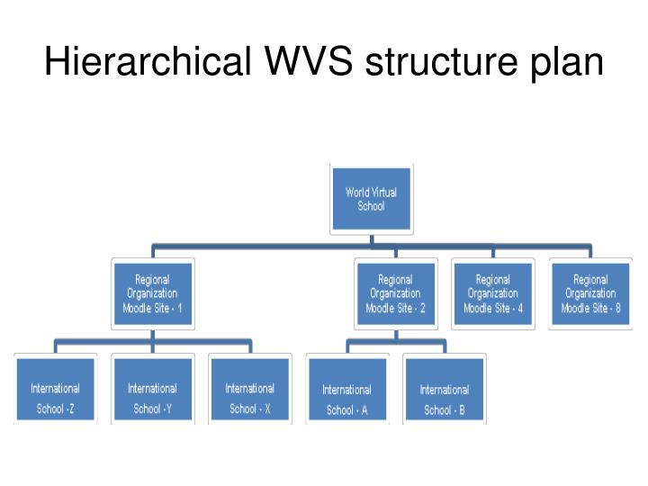 Hierarchical WVS structure plan