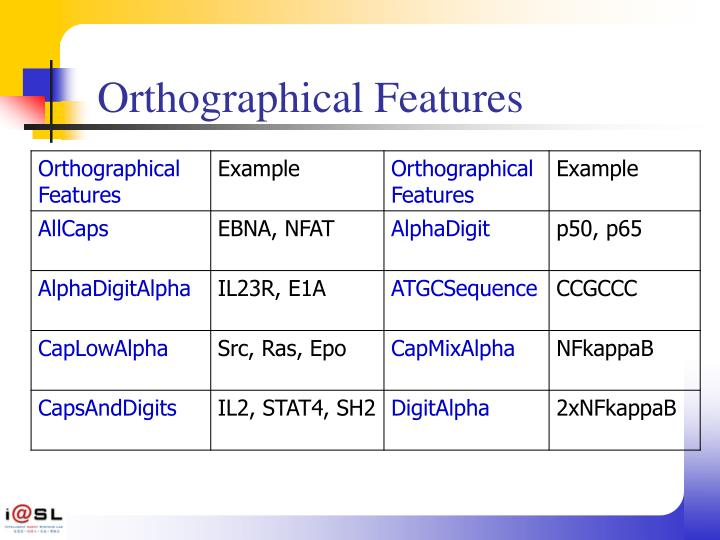 Orthographical Features