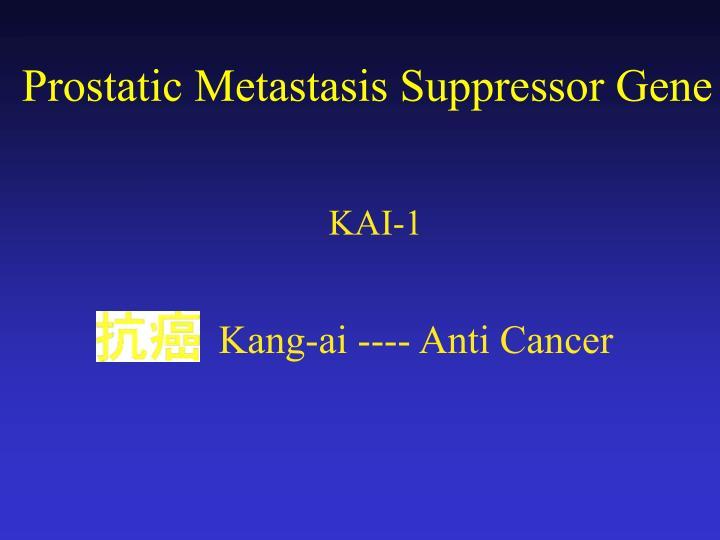 Kang-ai ---- Anti Cancer