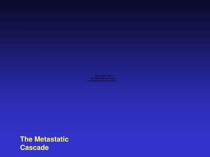 The Metastatic Cascade