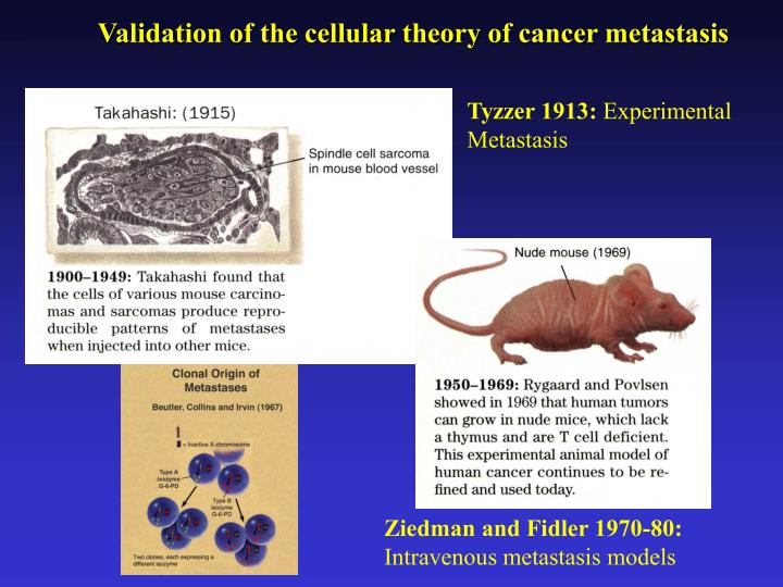 Validation of the cellular theory of cancer metastasis