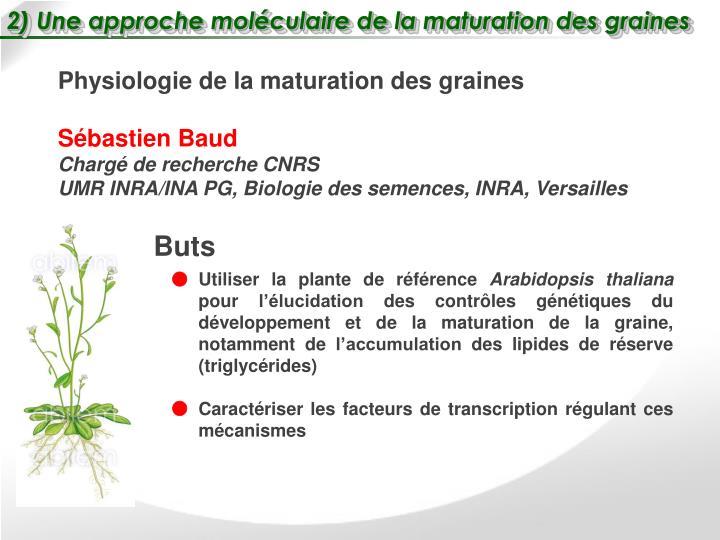 2) Une approche moléculaire de la maturation des graines