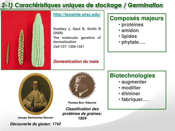 2-1) Caractéristiques uniques de stockage / Germination