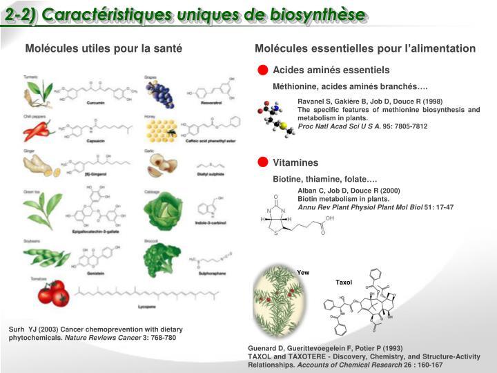 2-2) Caractéristiques uniques de biosynthèse