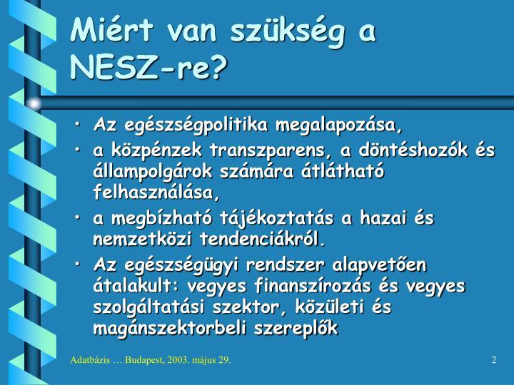 Miért van szükség a NESZ-re?
