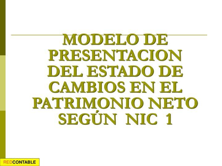 MODELO DE PRESENTACION DEL ESTADO DE CAMBIOS EN EL PATRIMONIO NETO SEGÚN  NIC  1