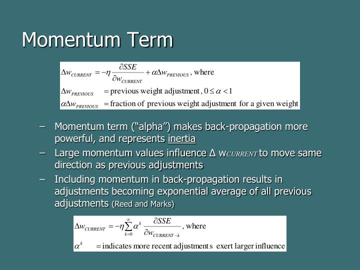 Momentum Term