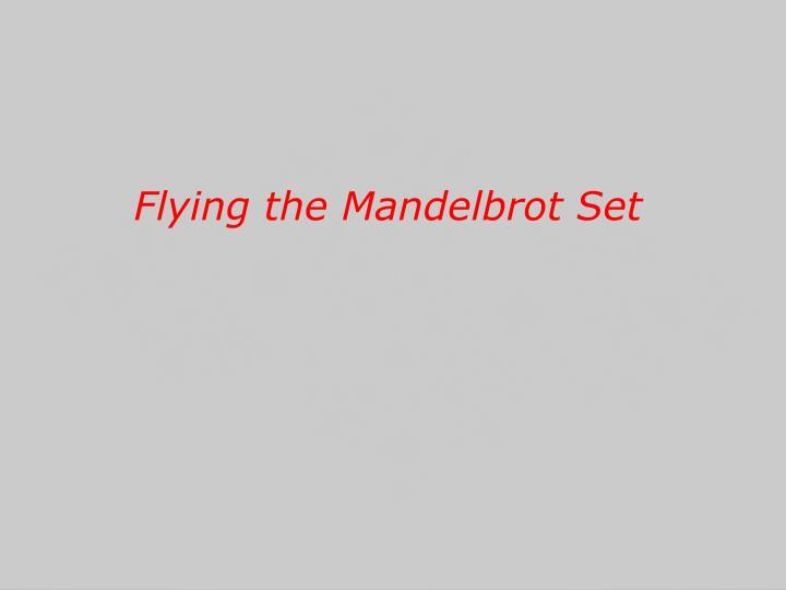 Flying the Mandelbrot Set