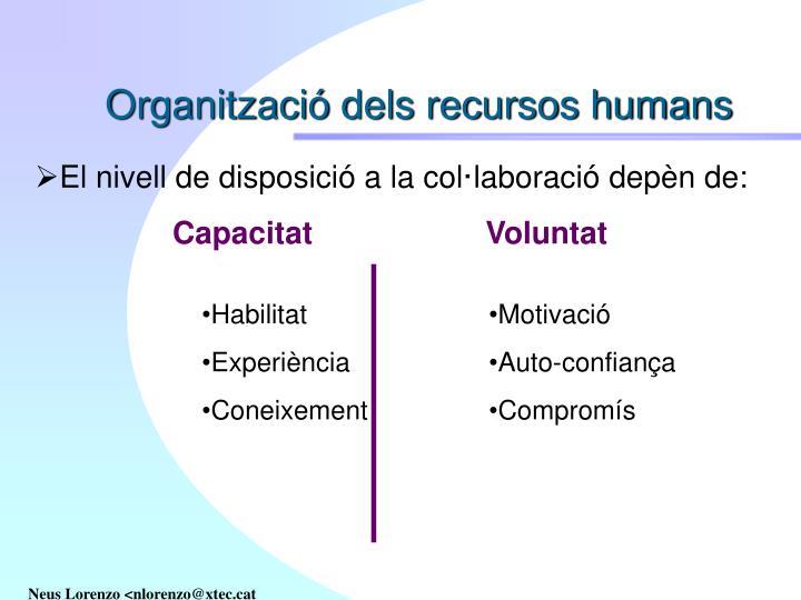 Organització dels recursos humans