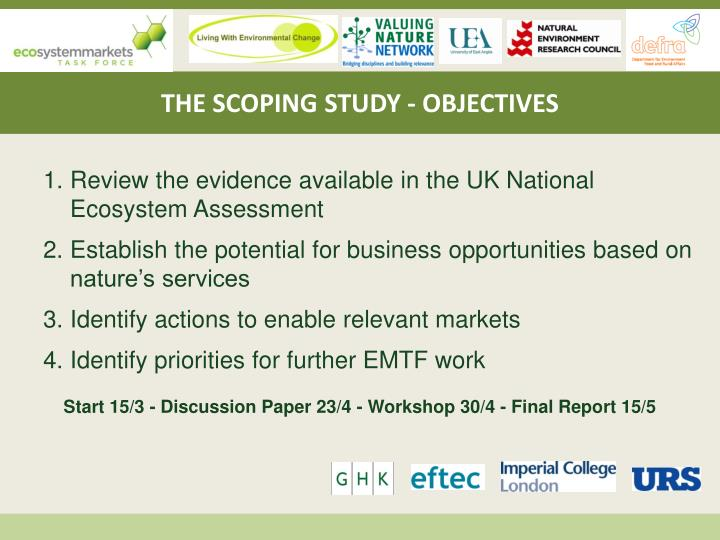 THE SCOPING STUDY - OBJECTIVES