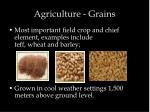 agriculture grains