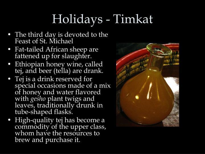 Holidays - Timkat