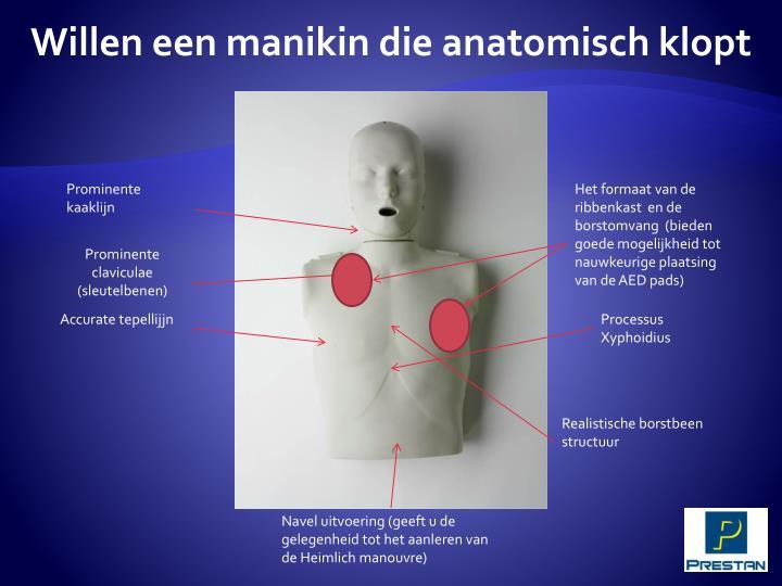 Willen een manikin die anatomisch klopt