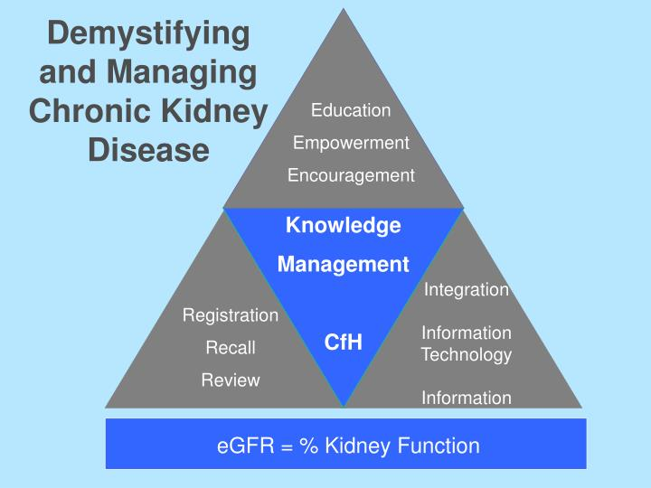 Demystifying and Managing Chronic Kidney Disease