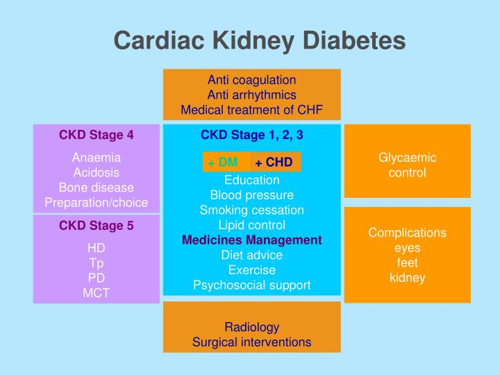 Cardiac Kidney Diabetes