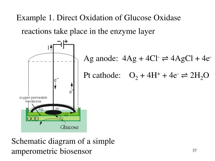 Example 1. Direct Oxidation of Glucose Oxidase