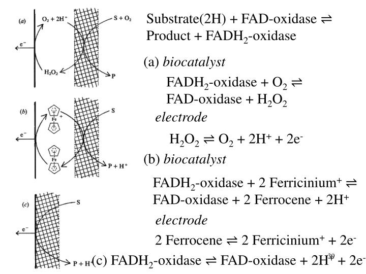 Substrate(2H) + FAD-oxidase ⇌ Product + FADH
