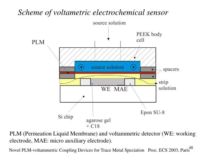 Scheme of voltametric electrochemical sensor