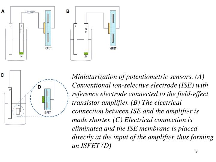 Miniaturization of potentiometric sensors. (A) Conventional ion-selective electrode (ISE) with reference electrode connected to the field-effect transistor amplifier. (B) The electrical connection between ISE and the amplifier is made shorter. (C) Electrical connection is eliminated and the ISE membrane is placed directly at the input of the amplifier, thus forming an ISFET (D)