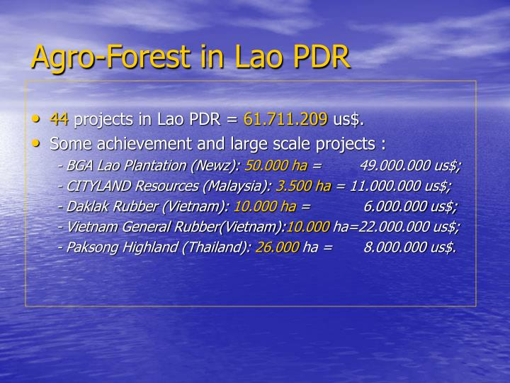 Agro-Forest in Lao PDR