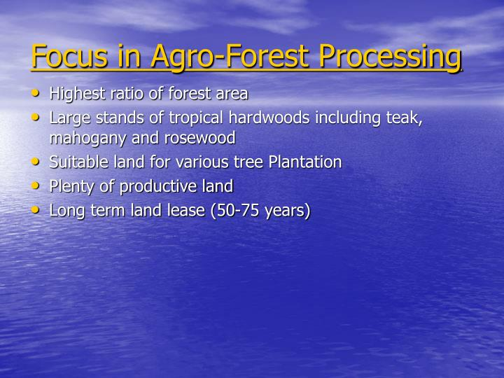Focus in Agro-Forest Processing