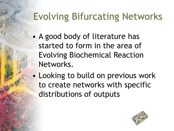 Evolving Bifurcating Networks