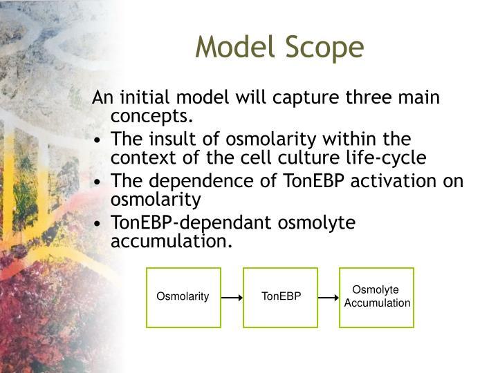 Model Scope