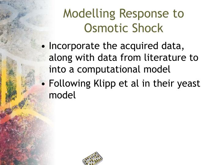 Modelling Response to Osmotic Shock