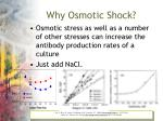 why osmotic shock