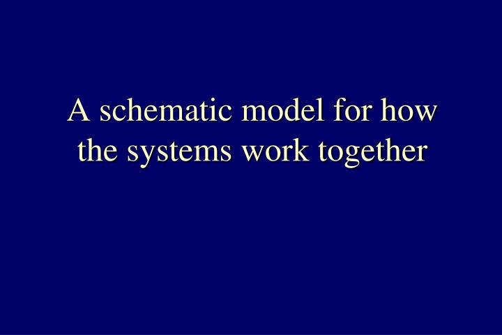 A schematic model for how the systems work together