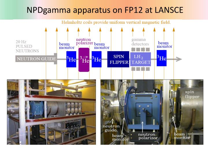 NPDgamma apparatus on FP12 at LANSCE
