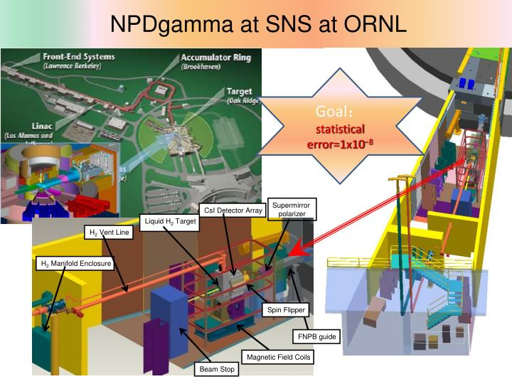 NPDgamma at SNS at ORNL