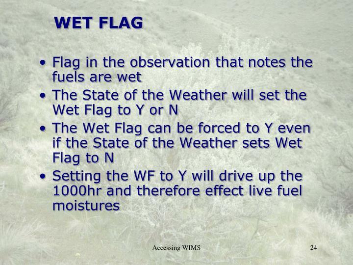 WET FLAG