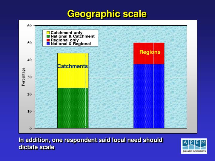 Geographic scale