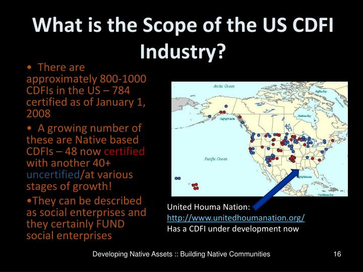 What is the Scope of the US CDFI Industry?