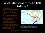 what is the scope of the us cdfi industry