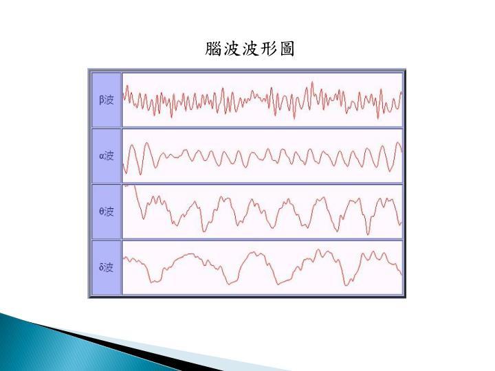 腦波波形圖