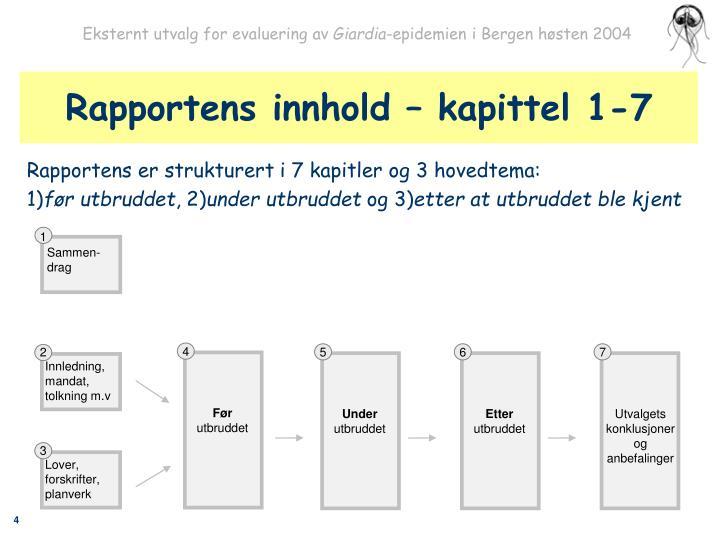 Rapportens innhold – kapittel 1-7