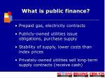 what is public finance2