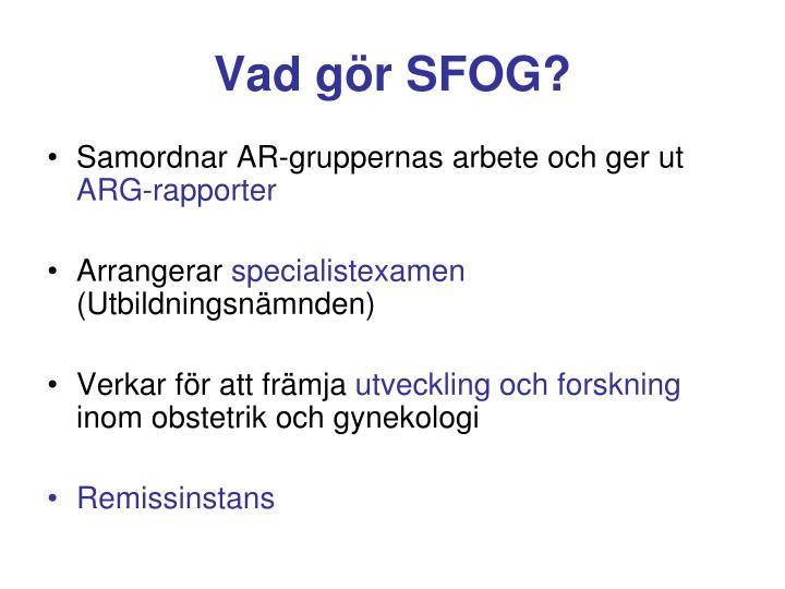 Vad gör SFOG?