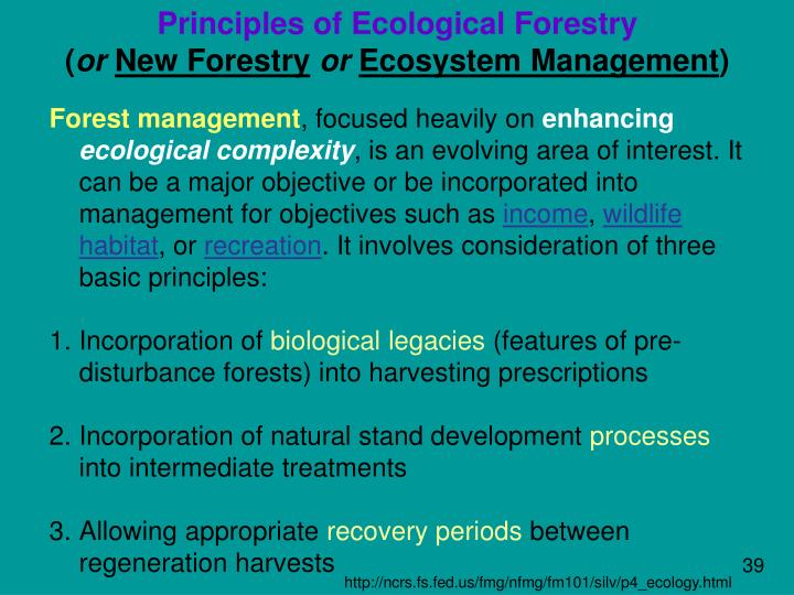 Principles of Ecological Forestry
