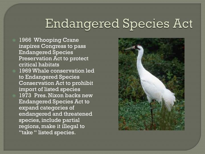 Endangered species act1